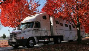 Sallee Fall Keeneland Horse Transport